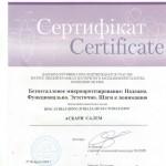 Стоматологическое протезирование в Киеве, Безметаллическое протезирование